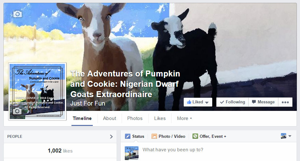 1,000 Likes on Facebook