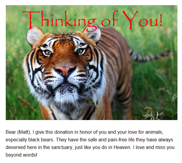 Animal Sanctuary Donation in Memory of Matt