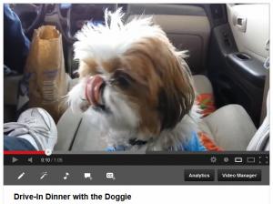 Drive In Doggie