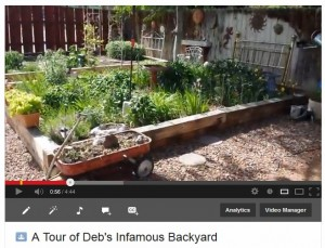 Deb's Infamous Backyard