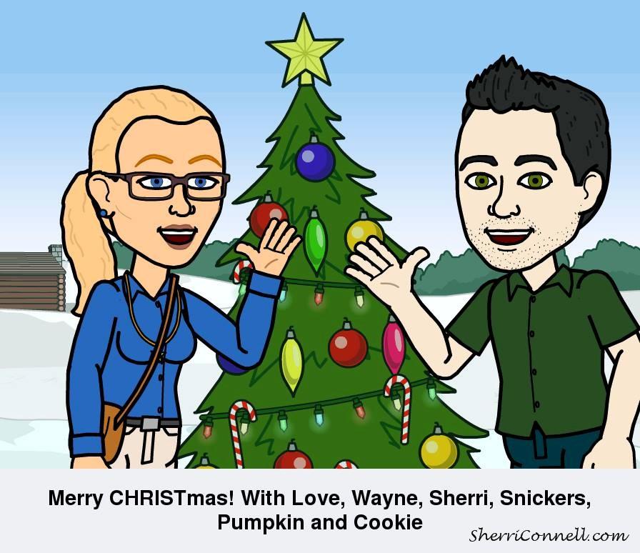 2015 Merry Christmas