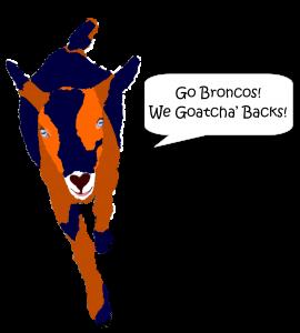 Punkie Broncos