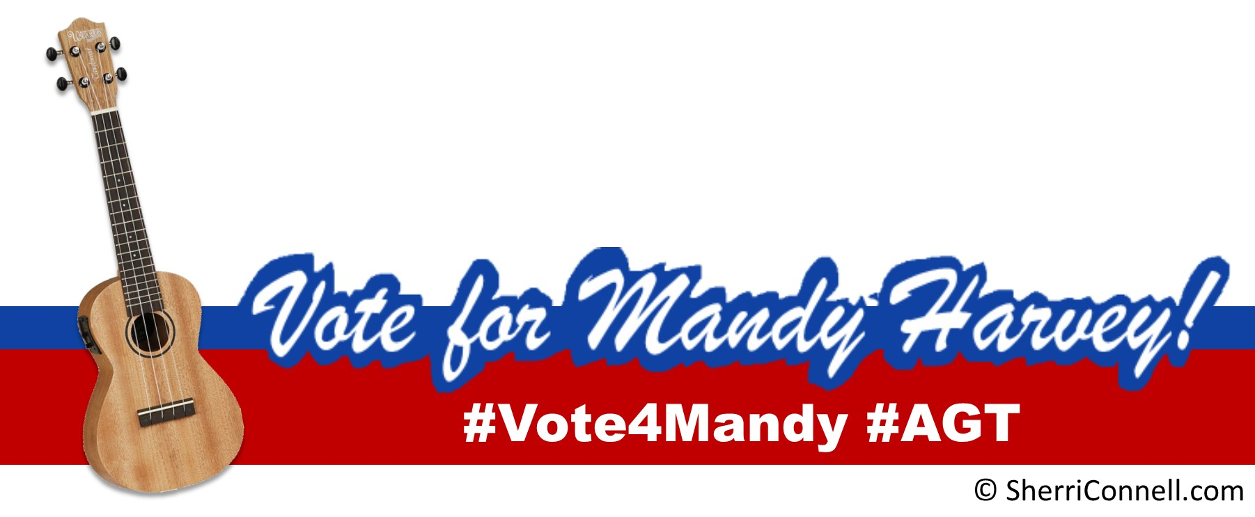 Vote for Mandy Harvey Facebook Frame